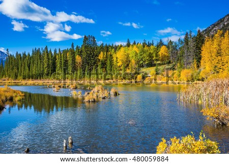 Indian summer in the Rocky Mountains of Canada. The superficial lake Vermilion among mountains and the woods