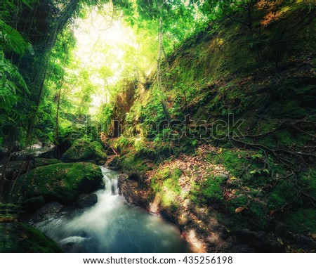 Indonesia wild jungles. Amazing mystery rainforest landscape with small waterfall flowing among tropical plants - stock photo