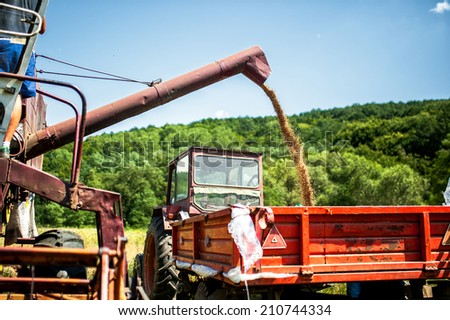 Industrial combine harvester unloading wheat crops in trailer - stock photo