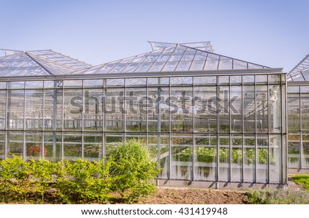 Industrial greenhouse with colourful flowers in the Netherlands - stock photo