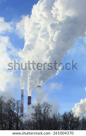 industrial landscape pipe plant with white smoke and the tops of trees without leaves against the blue sky