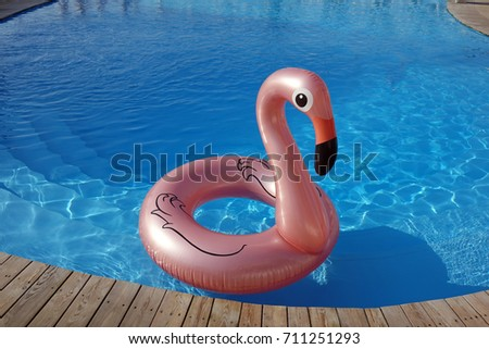 inflatable mattress flamingos in the swimming pool