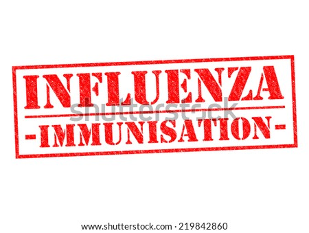 INFLUENZA IMMUNISATION red Rubber Stamp over a white background. - stock photo