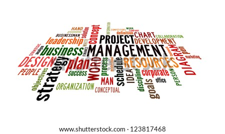 Info text graphic Project Management in word shape isolated in white background - stock photo