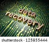 Information concept: circuit board with word Data Recovery, 3d render - stock vector