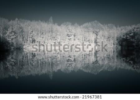 Infrared image, reflection - stock photo