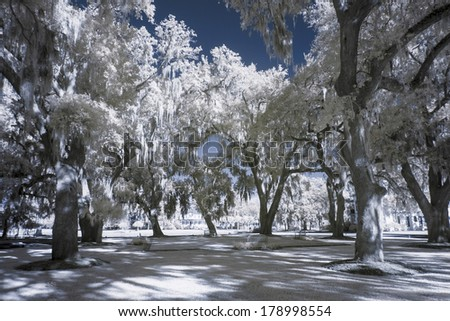 infrared photo of park and trees - stock photo