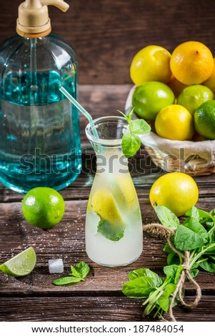 Ingredients for a fresh cold drink lemon