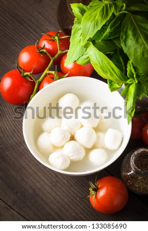 Ingredients for caprese salad: tomato, mozzarella, fresh basil, olive oil, spices - stock photo