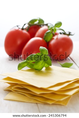 ingredients for lasagna - stock photo