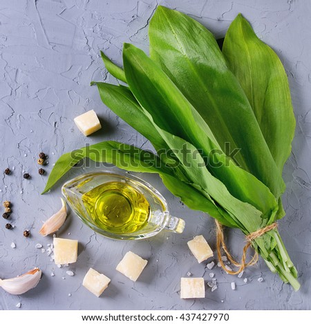 Ingredients for pesto. Bunch of ramson, olive oil, parmesan cheese, garlic, salt and pepper over gray textured background. Flat lay. Square image - stock photo