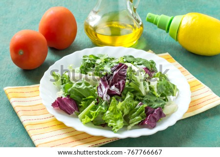Ingredients for preparation of vitamin salad: different salad leaves, tomatoes, olive oil, lemon with spray pump. Healthy food and vitamins