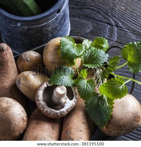 ingredients for veggie vegetable  casserole sweet potatoes yams herbs rosemary mushrooms champignon on dark vintage wooden table - stock photo