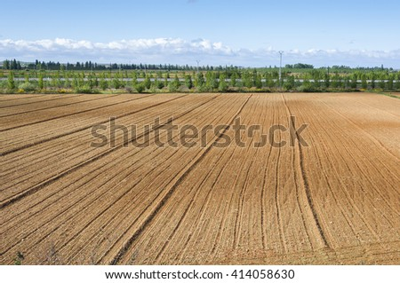 Initial stages of cornfields in the plain of the River Esla, in Leon Province, Spain - stock photo