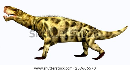 Inostrancevia Permian Reptile - Inostrancevia was a carnivorous reptile that lived in the Permian Period of Russia.