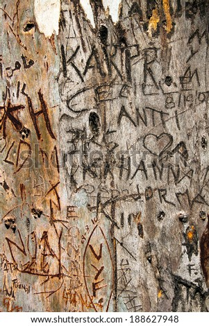 Inscriptions carved in wood, grunge background - stock photo