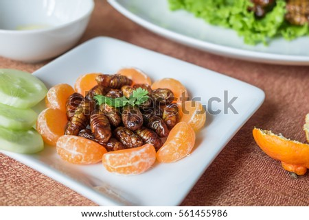 Insect foods set - Closeup Wood worm fried insect and orange on white plate.  Insects or bugs are full of protein, vitamins and minerals delicious are popular in Thailand