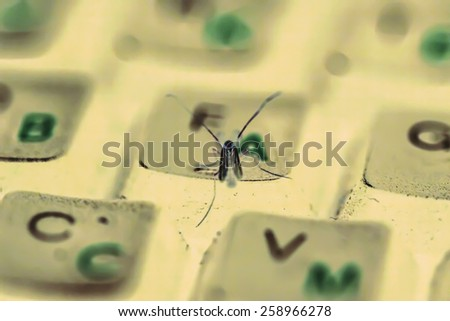 Insect on keyboard in futuristic bokeh colours - stock photo