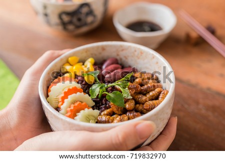 Insects food with Rice Berry -  Human female hands holding insects food with Rice Berry in a retro bowl. Healthy meal high protein diet concept. Close-up, Selective focus.