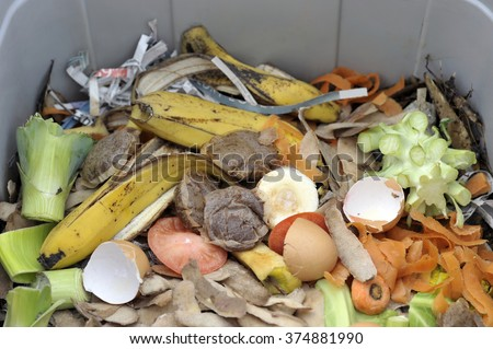 Inside of a home wormery or worm bin with vegetable, fruit, general kitchen food waste and shredded newspaper. - stock photo