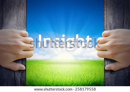 Insight. Hand opening an old wooden door and found Insight word floating over green field and bright blue Sky Sunrise. - stock photo