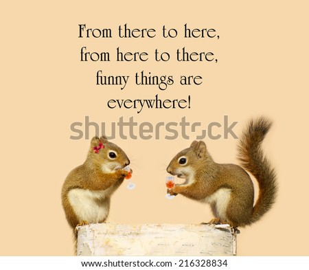 Inspirational quote about humor by Dr. Suess, with a pair of squirrels in love sipping liquer from crystal glasses. - stock photo