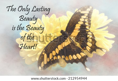 Inspirational quote about life and spirit by the persian poet Rumi with a beautiful Giant Swallowtail  Butterfly  on a textured background