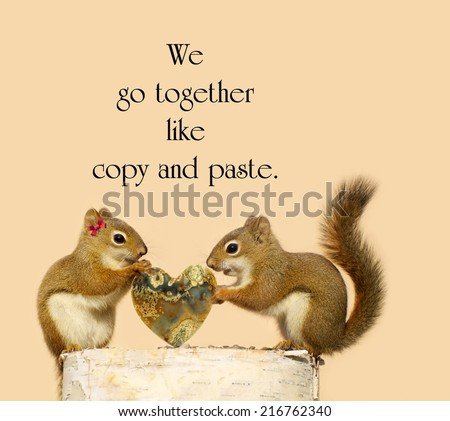 Inspirational quote about love, by an unknown author, with a pair of squirrels in love holding a pretty stone heart. - stock photo