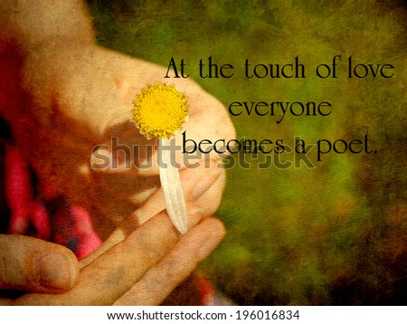 Inspirational quote about love by Plato, with a young girl's hand holding a daisy.  Grunge textured. - stock photo