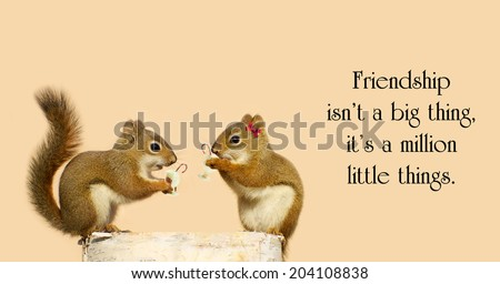 Inspirational quote by unknown artist with two little squirrel friends sharing some Christmas cheer. - stock photo