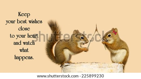Inspirational quote on life by Tony DeLiso with a pair of squirrels with a wishbone, making wishes.  - stock photo