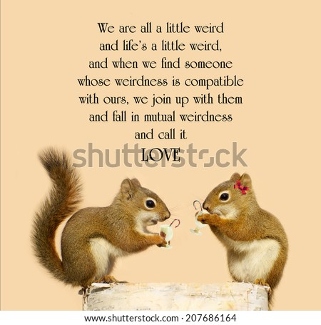 Inspirational quote on love by Dr. Suess with a cute pair of squirrels in love, enjoying some eggnog at Christmas time. - stock photo