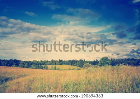 instagram nashville tone Green meadow and forest under blue dramatic sky with clouds