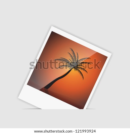 Instant photo with palm tree. Raster version. - stock photo