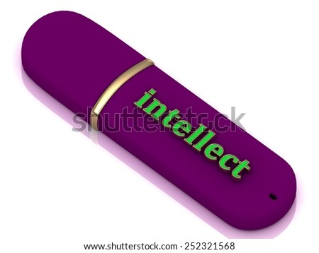 intellect - inscription bright volume letter on blue USB flash drive on white background - stock photo