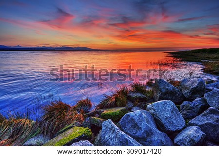 Intense colors  - stock photo