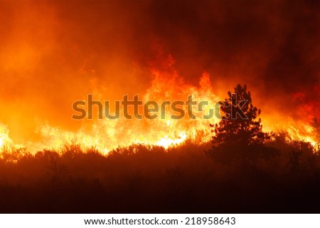 Intense flames from a massive forest fire. Flames light up the night as they rage thru pine forests and sage brush.    The Carlton Complex wild fire was Washington state's largest fire in history.