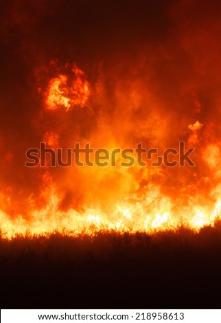 Intense flames from a massive forest fire. Flames light up the night as they rage thru pine tree forests and sage brush. The Carlton Complex wild fire was Washington state's largest fire in history.