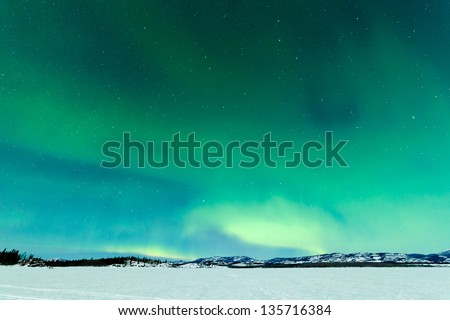 Intense Northern Lights or Aurora borealis or polar lights on moon lit night sky over winter landscape of Lake Laberge  Yukon Territory  Canada - stock photo