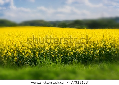 Intentional blur at this design
