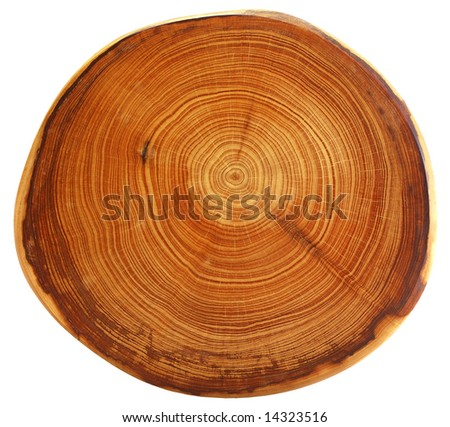 interesting brown wooden structure for a background - stock photo