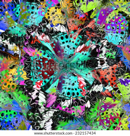 Interesting Colorful Background Pattern made of Leopard Lacewing butterflies in fresh colors - stock photo