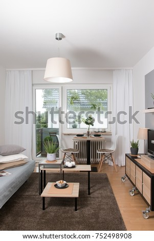 Interior design. Interior shots of a flat. Living room scene with a couch, mirror, plants and a carpet.
