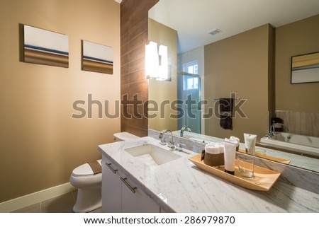 Interior design of a luxury bathroom with a wood wall and a large mirror. - stock photo