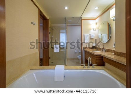 Interior design of a spacious, luxury bathroom.