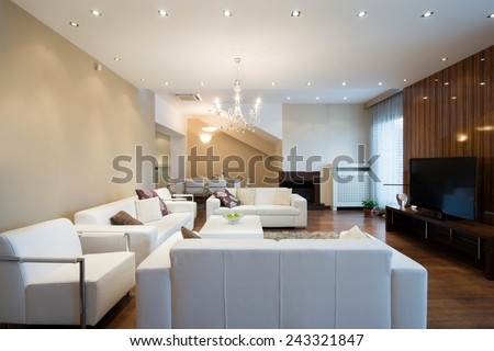 Interior of a spacious living room with fireplace in luxury apartment
