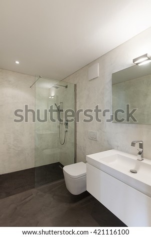 interior of apartment, modern bathroom with sink and shower