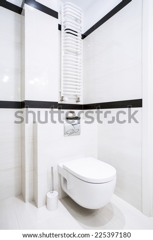 Interior of clean and fresh white toilet