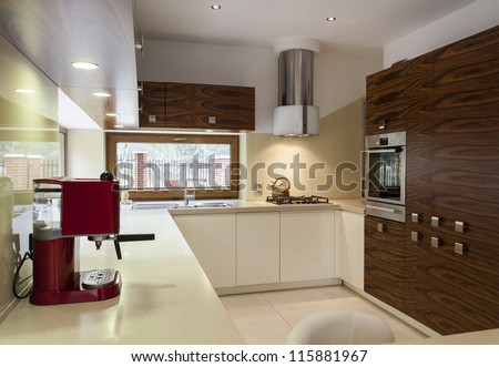 Interior of modern, stylish kitchen with wooden cupboards