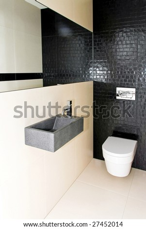 Interior shot of very small contemporary toilet
